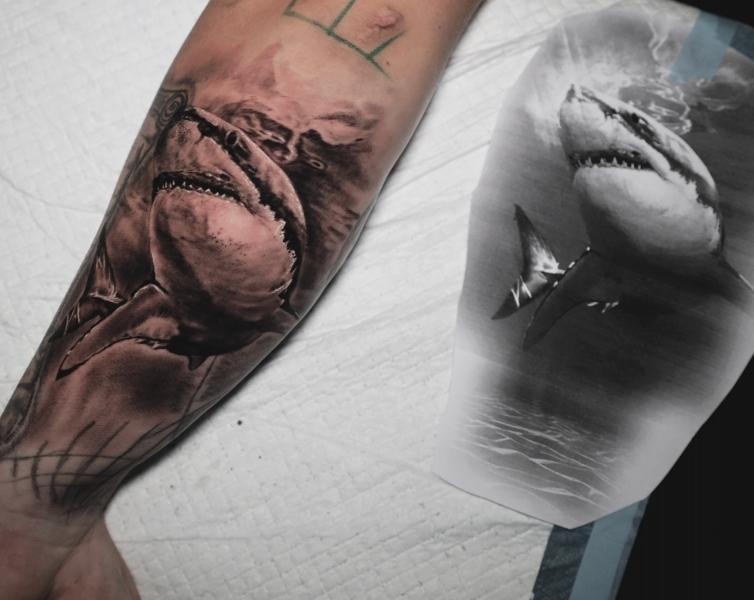 Hai-Shark-Tattoo